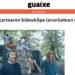 Guaixe 1